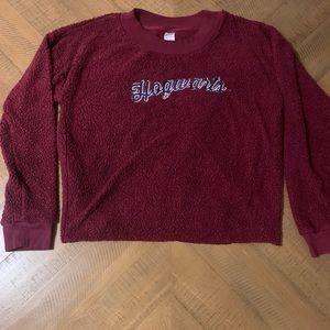 Harry Potter Hogwarts Fleece Pullover